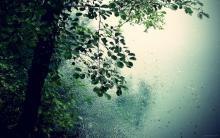 طراوت اولین بارش باران پاییز 95، در شهرستان فامنین